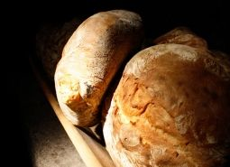 Consummate recipes with the use of Crème de Levain
